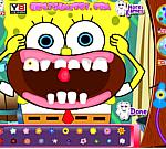 Hàm răng tuyệt vời