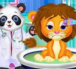 Bác sĩ giỏi nhất thế giới động vật