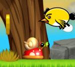 Giải cứu trứng chim