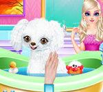 Công chúa Elsa New Poodle Friend